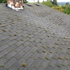 Roof Before Cleaning