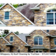 Whippany NJ Roof Clean1